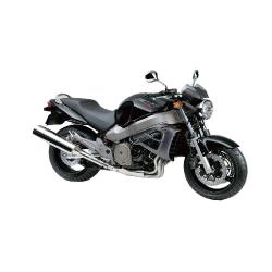 1100 X11 (1999-2003)