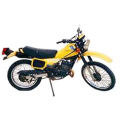 100 TS ERZ (1989-1990)