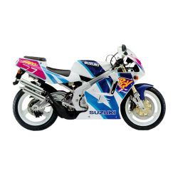 250 RGV R/ M et N (1991-1992)