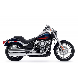 1750 Softail Low Rider FXLR (107 cubic inches) (2018-2020)