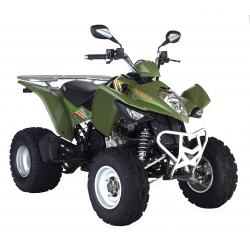 300 MAXXER (2003)