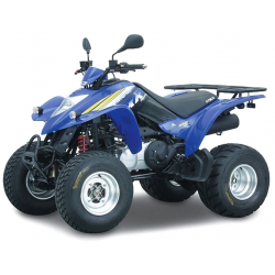 250 KXR / MAXXER (1999-2018)